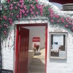 teagardens_7_rosario_marazion_bandb