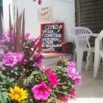 teagardens_9_rosario_marazion_bandb